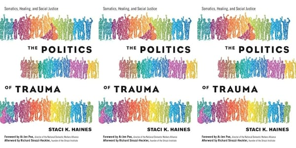cover of the politics of trauma by staci haines, books