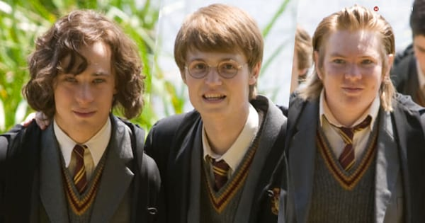 harry potter, more hp