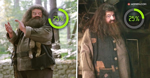 harry potter personality, wizard, wizard percentage, hagrid