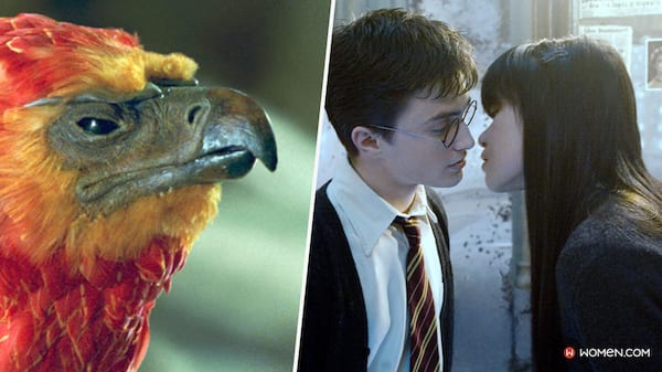 Fawkes, Phoenix, harry potter zoomed in, harry potter